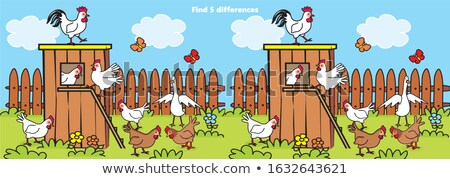 finding differences game with hens and roosters Stock photo © izakowski