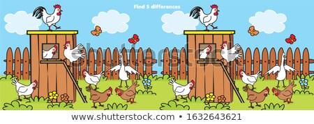 bulmak · farklılıklar · oyun · kuşlar · karikatür - stok fotoğraf © izakowski