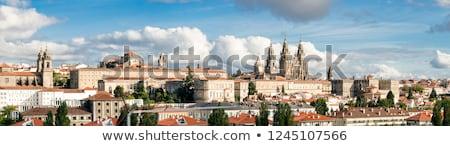 Vista catedral Santiago España famoso espanol Foto stock © diego_cervo