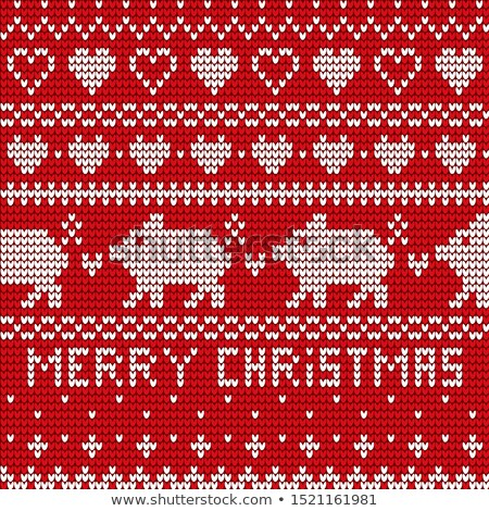 Copo de nieve Navidad bordado vector adornos Foto stock © robuart