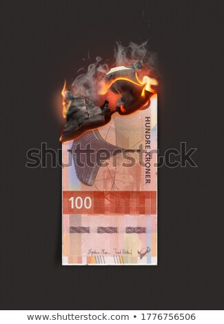 Kroner Burning Cash Note Stock photo © albund
