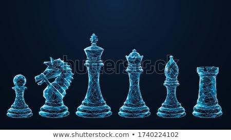 チェス セット チェスの駒 黒白 暗い ファンタジー ストックフォト © ensiferrum