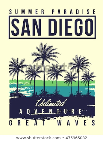Surfing t-shirt graphic design. Surf lettering San Diego. Vector Stock photo © Andrei_