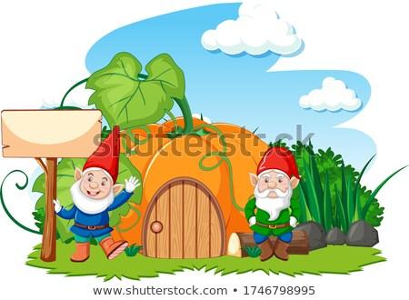 Gnomes and mushroom pumkin house cartoon style on white backgrou Stock photo © bluering
