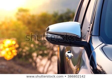 Pickup sun glass Stock photo © pongam