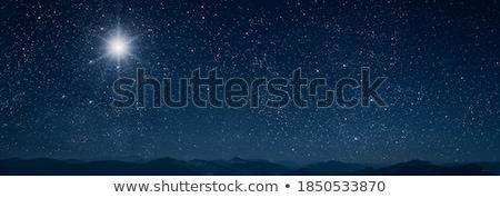 karácsony · éjszaka · fa · hó · csillag · fehér - stock fotó © BibiDesign