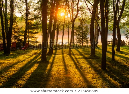 Misty sunrise eau ciel soleil nature Photo stock © njaj