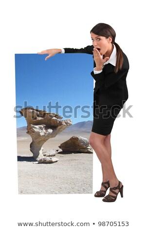 Zakenvrouw vreemd poster kantoor woestijn Stockfoto © photography33