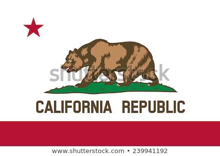 Vlag Californië wind vrijheid beer Stockfoto © creisinger