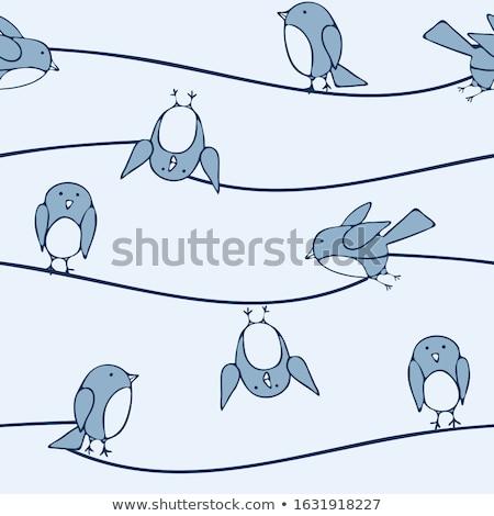 Vicces baba boldog természet madár kommunikáció Stock fotó © dagadu