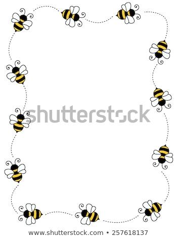 honey bees worker bee border background Stock photo © sherjaca