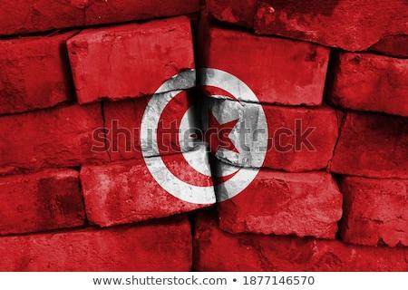 Bandeira Tunísia parede de tijolos pintado grunge textura Foto stock © creisinger