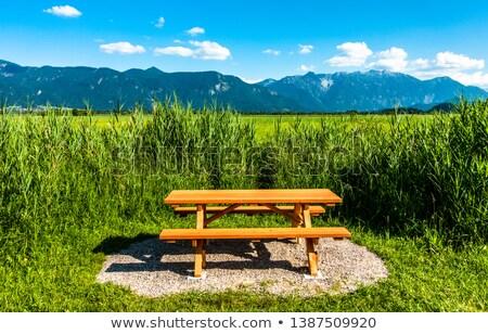 Verweerde picknicktafel bos houten voorjaar gras Stockfoto © rhamm