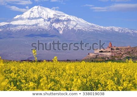 древних Церкви Армения матери собора святой Сток-фото © ruzanna