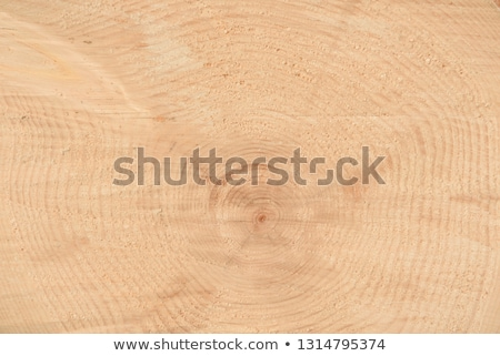 closeup of old pine saw cut stock photo © tashatuvango