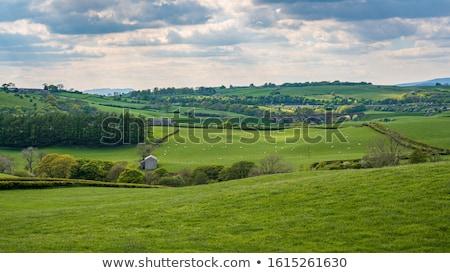 здании · стены · пейзаж · области · зеленый - Сток-фото © capturelight