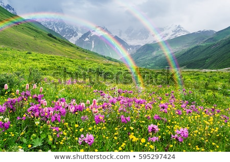 Green mountain and rainbow in sky Stock photo © zzve