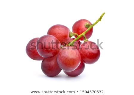 Groot druif blad wijnstok wijngaard Stockfoto © pixelsnap