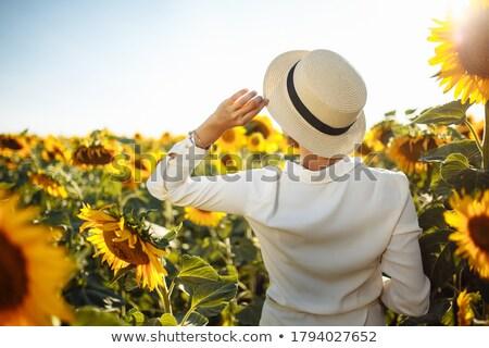 sunflower woman stock photo © iko