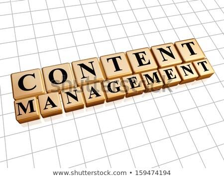 Contenido gestión dorado cubos Internet texto Foto stock © marinini