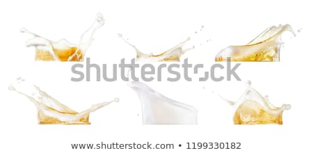frio · vidro · cerveja · salpico · em · torno · de · isolado - foto stock © pxhidalgo
