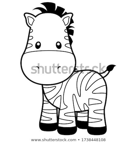 Bonitinho zebra desenho animado sorridente dois grandes olhos Foto stock © aminmario11