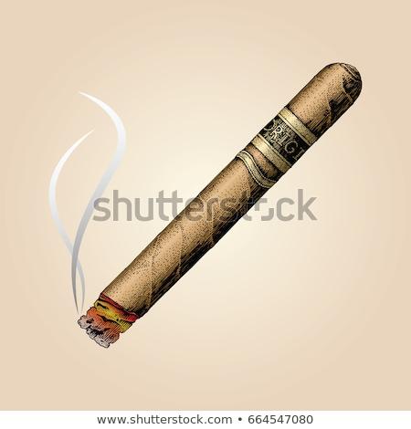 öreg barna szivar izolált fehér füst Stock fotó © jonnysek