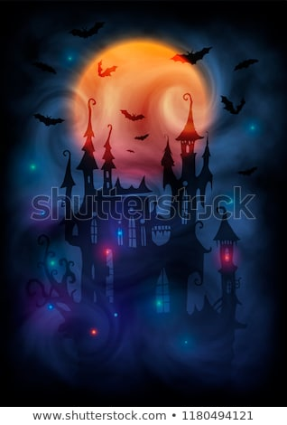 Old witch  haunted castle card, vector illustration Stock photo © carodi