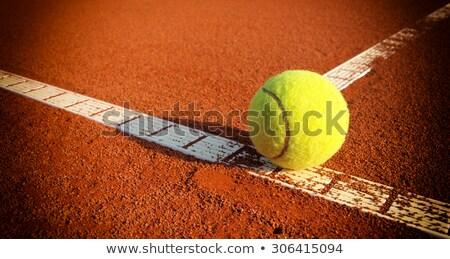 Agyag teniszpálya játékos sport tenisz labda Stock fotó © mikdam
