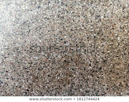Stock photo: Decorative Pattern Fragment of Gray Paving Slabs.