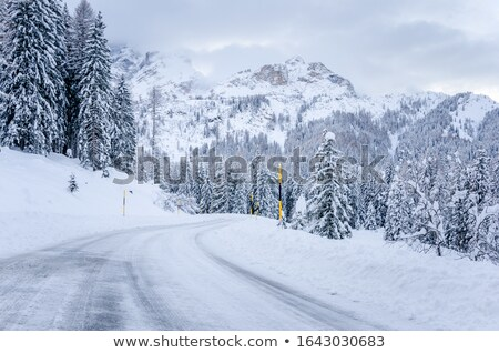 Winding towers in the snow Stock photo © Ustofre9