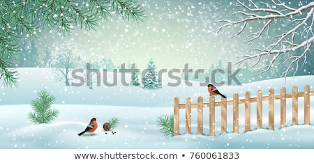 Winter landscape view fields forests covered snow Stock photo © fotoaloja