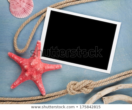 blank photo frame with ship rope and starfish stock photo © karandaev