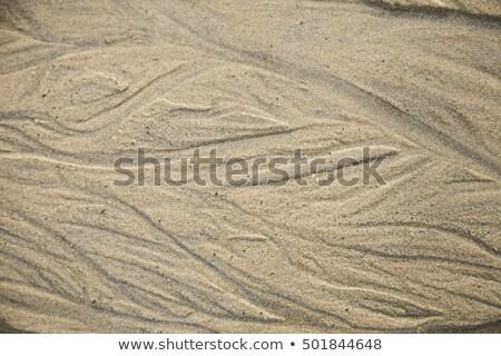 background of wet sand stock photo © oleksandro