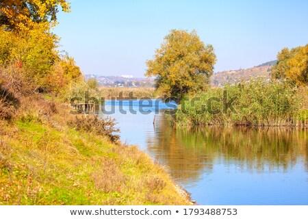 erken · sonbahar · renkleri · görmek · nehir · Washington - stok fotoğraf © jeffmcgraw