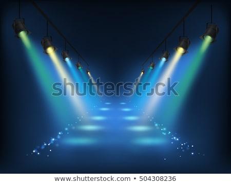 üres · megvilágított · színpad · gitár · fény · mikrofon - stock fotó © cherezoff