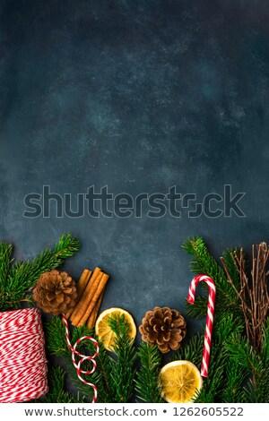 Fir Cones and Cinnamon Sticks on Snow Stock photo © frannyanne