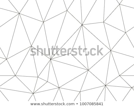 Black filled geometric shapes and elements with lines, triangles Stock photo © Vanzyst