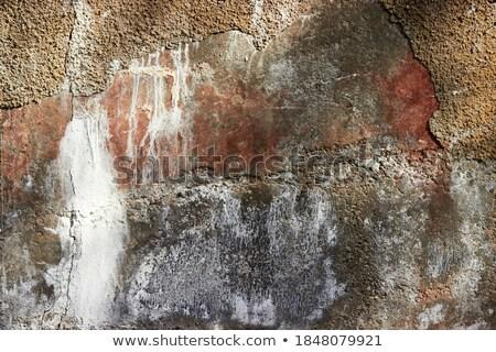 branco · quartzo · pedra · rocha · cristal - foto stock © frimufilms