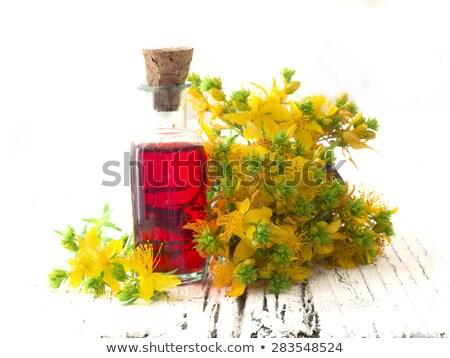 Yağ şişe taze çiçek tıp bitki Stok fotoğraf © Kidza