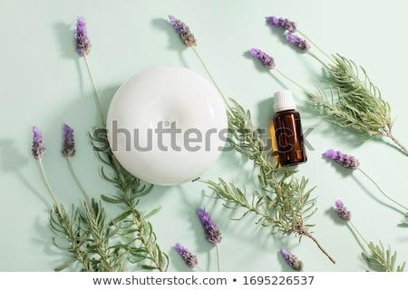 drogen · lavendel · houten · bloemen · witte · geneeskunde - stockfoto © lana_m