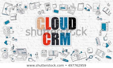Cloud CRM on White Brick Wall. Stock photo © tashatuvango