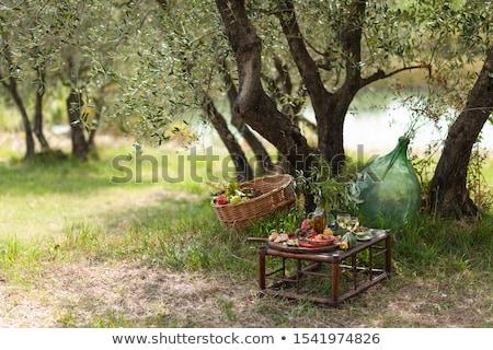 オリーブの木 · ギリシャ語 · ビーチ · 空 · 海 - ストックフォト © stevanovicigor