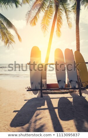 Surfboard on tropical island. Paradise beach of palm trees, sea, sun and sand Stock photo © orensila