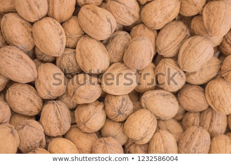 pile of whole walnuts Stock photo © Digifoodstock