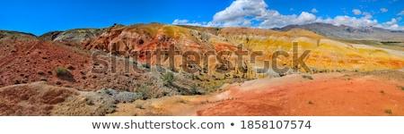 живописный Панорама стилизованный иллюстрация пейзаж бесшовный Сток-фото © tracer