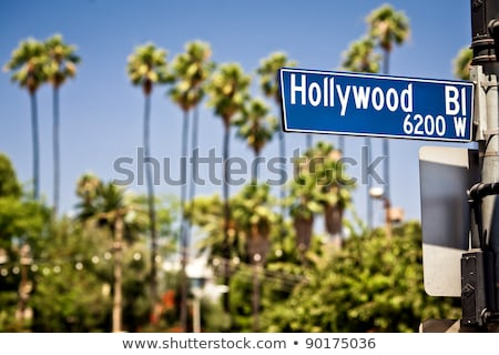 Los · Angeles · Californië · hollywood · heuvels · stad - stockfoto © phbcz