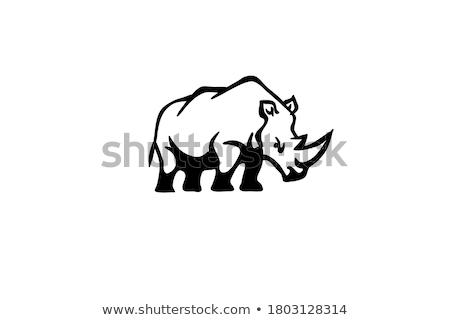 Cartoon Rhino Silhouette Crazy Stock photo © cthoman