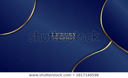 Creativa azul ondulado tarjeta de visita diseno negocios Foto stock © SArts