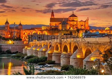 Roman Bridge in Cordoba.  Stock photo © benkrut
